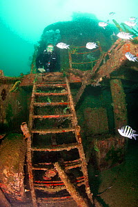 Diver exploring Shakem Wreck, a cargo boat that sank in 2001. Grenada, West-Indies, Caribbean, May 2009. Model released. - Michele Westmorland