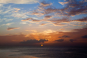 Sunset near Wallilabou Bay, The Grenadines, West Indies, Caribbean, May 2009.  -  Michele Westmorland