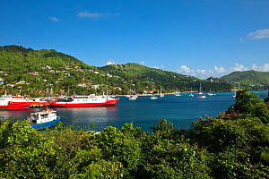Boats in Port Elizabeth harbour, Bequia, The Grenadines, Caribbean, May 2009.  -  Michele Westmorland
