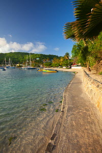 Port Elizabeth in Bequia, The Grenadines, Caribbean, May 2009.  -  Michele Westmorland