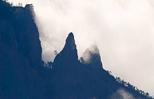 Mountain ridges of Caldera de Taburiente silhouetted through clouds. View from Roque de los Muchachos, La Palma Island, Canary Islands, Spain, February. - Martin Gabriel