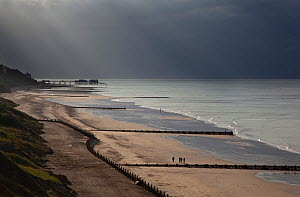 Coastline with pier and groynes from Overstrand to Cromer with storm clouds overhead, Norfolk, UK, July 201  -  Ernie Janes