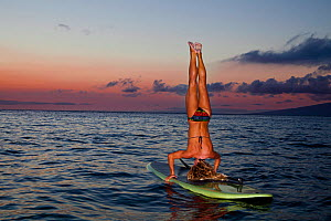 Surf instructor Tara Angioletti does a head stand on her stand-up paddle board. Canoe Bearch, Maui. Hawaii. Model released. - David Fleetham
