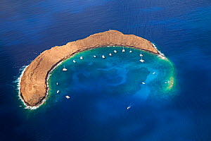 Molokini Crater, aerial shot of the crescent shaped islet at mid-morning with charter boats. Maui, Hawaii., June 2011.  -  David Fleetham