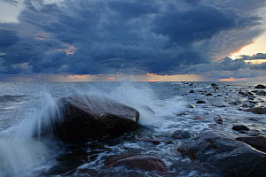 Waves crashing onto beach rock under dark clouds. Hiiumaa Island, Estonia, Europe, August 2011. - Sven Zacek