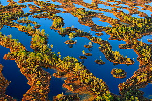 Lowland bog landscape seen from the air. South Estonia, Europe, October 2010. - Sven Zacek