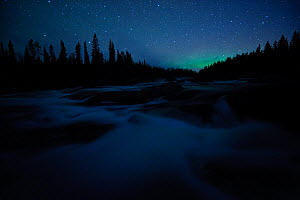 Northern lights far on the horizon in night landscape. Sarek National Park, Sweden, Europe, September. - Sven Zacek