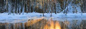 Snow thawing on forested river bank. Estonia, Europe, February 2011.  -  Sven Zacek