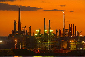 Fawley Oil Refinery at sunset, Fawley, nr Southampton, Hampshire, UK, September 2009 - Peter Lewis