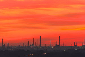 Sunset over Fawley oil refinery viewed from Portsdown Hill, Hampshire, UK, October 2010  -  Peter Lewis