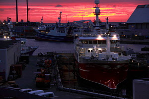 Dawn across Skagen Harbour, Denmark, September 2011.  -  Philip Stephen