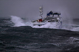 """Fishing vessel """"Harvester"""" crashing into wave on the North Sea, Europe, October 2011. Property released. - Philip Stephen"""