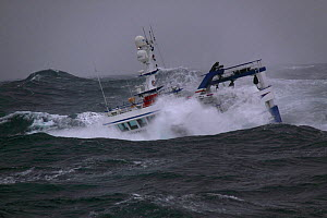 """Fishing vessel """"Harvester"""" in a wave trough on the North Sea, Europe, October 2011. Property released. - Philip Stephen"""