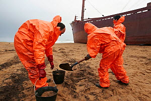 "Workers cleaning beach of spilt oil from cargo boat ""TK Bremen"", beached by heavy winds. Erdeven, Brittany, France, December 16th 2011.  -  Benoit Stichelbaut"