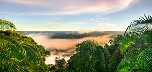 A dawn view into the heart of Maliau Basin - Sabah's 'Lost World'. Taken from the edge of the southern plateau, near Lobah Camp, Maliau Basin, Borneo. - Nick Garbutt