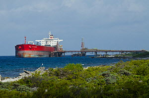 Tanker at BOPEC (Bonaire Petroleum Corporation N.V.) trans shipment and storage terminal. A deep-water port, with facilities for transferring oil from ocean-going to coastal tankers.  Bonaire, Netherl...  -  Pete Oxford