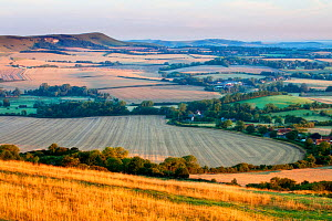 Rolling chalk downland and arable farmland viewed from Wilmington Hill, Wilmington, South Downs National Park, East Sussex, England, UK, July 2011 - Guy Edwardes / 2020VISION