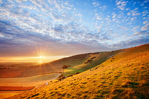 Sunrise over chalk downland viewed from Wilmington Hill, Wilmington, South Downs National Park, East Sussex, England, UK, July  -  Guy Edwardes / 2020VISION