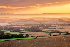 Dawn mist and rolling chalk downland viewed from Wilmington Hill, Wilmington, South Downs National Park, East Sussex, England, UK, July 2011 - Guy Edwardes / 2020VISION