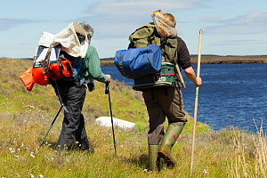 two RSPB scientists carrying equipment for study of aquatic invertebrate adundance as part of Common Scoter (Melanitta nigra) research, Forsinard Flows RSPB reserve, Flow Country, Sutherland, Highland...  -  Mark Hamblin / 2020VISION