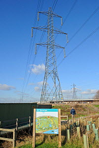 Electricity pylon and information board on Rainham Marsh RSPB Reserve, Thames Futurescapes Project, Essex, UK, January 2011 - Terry Whittaker / 2020VISION