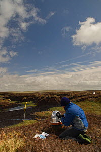 Scientist, Alona Armstrong, carrying out fieldwork on peatland carbon capture at Moorhouse NNR, Upper Teesdale, County Durham, UK, May 2011, model released - Rob Jordan / 2020VISION