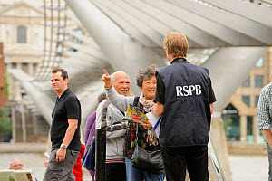 RSPB staff and member of the public at RSPB 'Date With Nature Event' for learning about urban Peregrine falcon, Tate Modern, South Bank, London, UK, September 2011, RSPB Greater Thames Futurescapes Pr... - Terry Whittaker / 2020VISION
