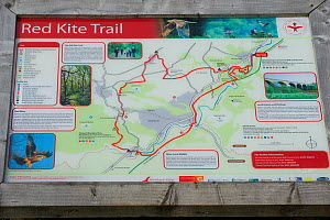 Red Kite trail map in the Urban Red Kite area of the Derwent Valley, Gateshead, Tyne and Wear, UK, on the edge of Tyneside following on from the 'Northern Kites' re-introduction programme between 2004...  -  Rob Jordan / 2020VISION