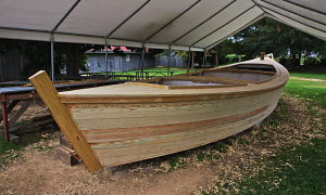 Construction of a scaled-down classic Chesapeake Bugeye, originally developed in the 19th century for oyster dredging, the boat under construction will serve as an exhibit in the Calvert Marine Museum... - Graham Brazendale