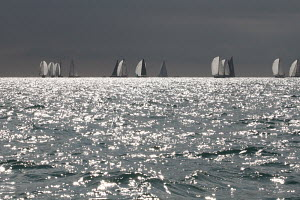 TP52 fleet on the horizon seen across silvery seas during a race at Key West Race Week, Florida, USA, January 2012. All non-editorial uses must be cleared individually.  -  Ingrid Abery
