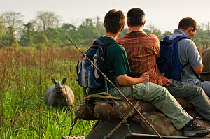 People on an elephant-back safari looking at a Greater One-horned / Indian / Asian One-horned Rhino (Rhinoceros unicornis). Vulnerable. Kasiranga National Park, Assam, India, April. - Mark Carwardine