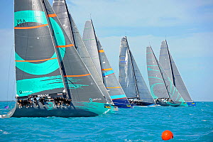 Class 52 winner 'Quantum' getting a clear start in race 1 at Key West Race Week, Florida, USA, January 2012. All non-editorial uses must be cleared individually.  -  Rick Tomlinson