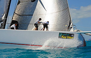 Mini Maxi 'Shockwave' during a race on day 5 of Key West Race Week, Florida, USA, January 2012. All non-editorial uses must be cleared individually.  -  Rick Tomlinson