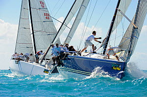 'Barking Mad' leading the Farr 40 fleet during a race on day 5 of Key West Race Week, Florida, USA, January 2012. All non-editorial uses must be cleared individually.  -  Rick Tomlinson
