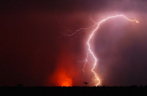 Thunderstorm and bushfire at night. Kalahari, Botswana, November. - Ole Jorgen Liodden