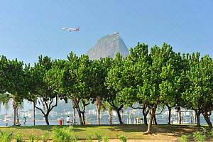 Aterro do Flamengo, a park designed by Roberto Burle Marx, with Rio de Janeiro city and the Sugar Loaf mountain in the background, Rio de Janeiro State, Brazil, May 2011  -  Luiz Claudio Marigo