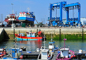 Trawler fishing boats on shipbuilding yard for maintenance works, Guilvinec, Brittany, France June 2011  -  Philippe Clement