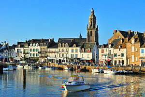 The harbour at Le Croisic, Loire-Atlantique, Pays-de-la-Loire, France September 2011  -  Philippe Clement