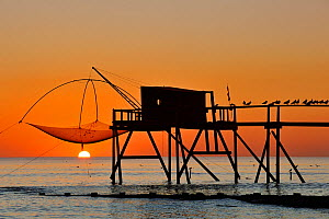 Traditional carrelet fishing hut with lift net on the beach at sunset, Loire-Atlantique, Pays-de-la-Loire, France September 2011  -  Philippe Clement