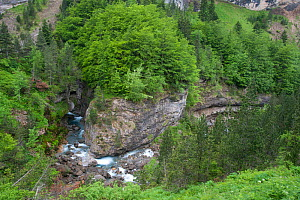 Looking down at a river in Gavarnie, Pyrenees, France, June 2011.  -  Inaki Relanzon