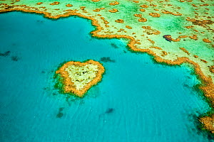 Whitsunday Islands, aerial view, Great Barrier Coral Reef, Queensland, Australia, October 2011.  -  Inaki Relanzon