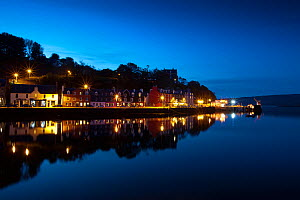Tobermory Harbour by night, Isle of Mull, Scotland, UK.  -  Alex Hyde