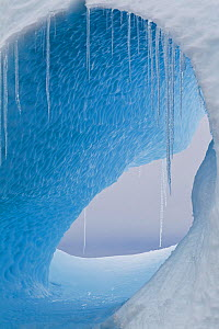 A large hole in an iceberg with icicles hanging. Yalour Islands, Antarctic Peninsula, Antarctica, December. - Brent Stephenson