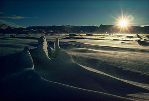 Snow carved by wind, Signy Island, South Orkney Islands, Antarctica. Freeze Frame book plate page 14. - Doug Allan