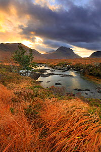 View looking towards Marsco, with stormy sky and the River Sligachan in foreground, Isle of Skye, Inner Hebrides, Scotland, UK, November 2010 - Mark Hamblin / 2020VISION
