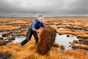 RSPB volunteers carrying out conservation work on moorland, Peak District NP, April 2011. Did you know? 10-15% of all moorlands are in the UK.  -  Ben Hall / 2020VISION