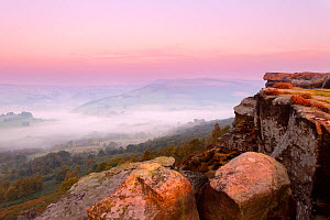 Scenic view from Curbar Edge at dawn, with mist in the distance, Peak District NP, UK, September 2011  -  Ben Hall / 2020VISION