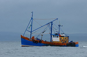 Scallop dredger Dawn Maid TN102 fishing near the Isle of Coll, Inner Hebrides, Scotland, UK, July 2011  -  Chris Gomersall / 2020VISION