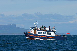 Sea Life Surveys vessel Sula Beag at sea with tourists looking for wildlife near the Isle of Eigg, Inner Hebrides, Scotland, UK, July 2011 - Chris Gomersall / 2020VISION