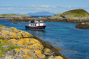 Wildlife watching tourists on the observation deck of Sea Life Surveys boat Sula Beag at the Cairns of Coll, Inner Hebrides, Scotland, UK, July 2011  -  Chris Gomersall / 2020VISION